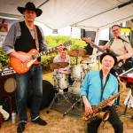Odyssey Blues & Soul Band: details
