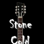 Stone Cold Stumble gig at The Ellesmere Centre