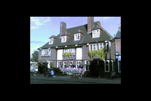 The Famous Green Man, Ewell